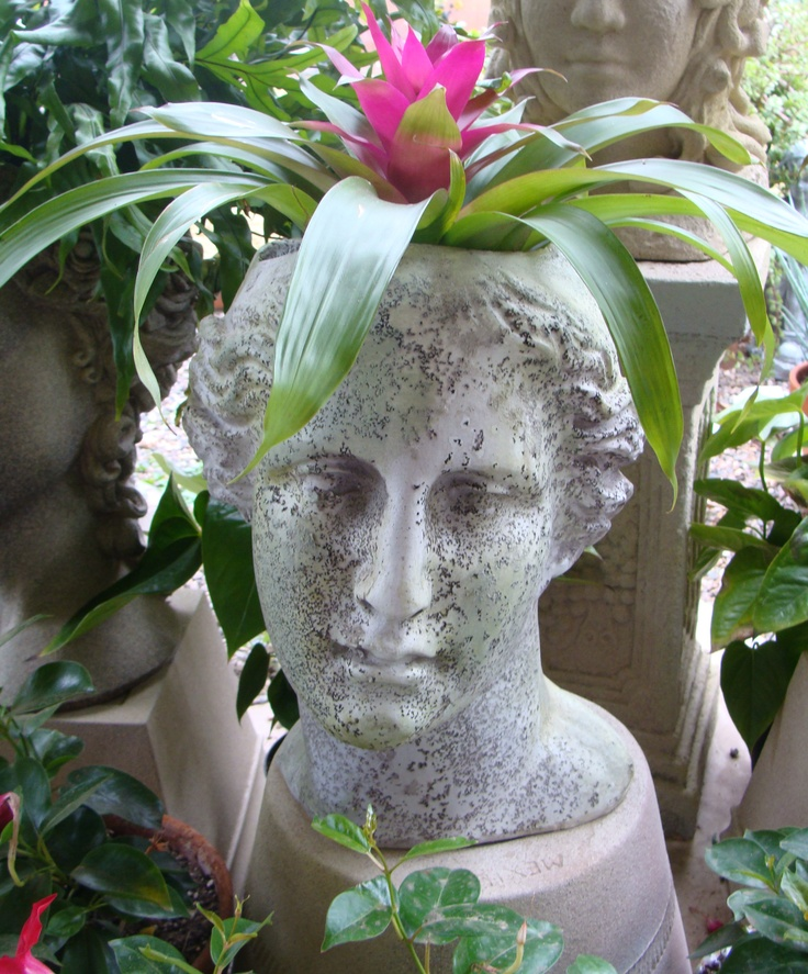 Pot Head Planters: One Of My Head Planters