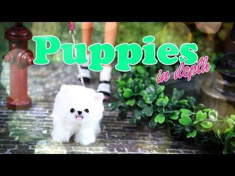 DIY - How to Make: Cute Doll Puppies - In Depth - Handmade - Craft - 4K - YouTube