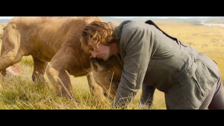 TARZAN WITH LIONS   Tarzan nuzzles a lion in the new legend of tarzan trailer ...
