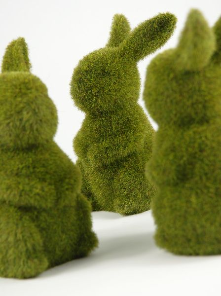 """Totally random, but I thought these might be cute in glass domes on the dessert table??  Moss Bunnies 6-3/4"""" Topiaries $5.99 each / 6 for $5 each"""