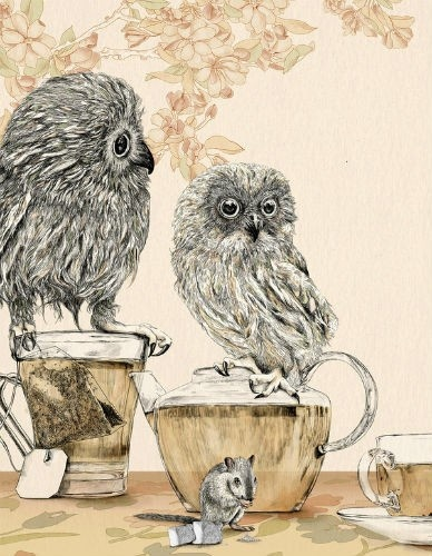 more owls: Art Illustrations, Owl Illustrations, Drawings, Graphics Art, Teas Time, Owls, Teas Parties, Gabriella Barouch, Gabriellabarouch