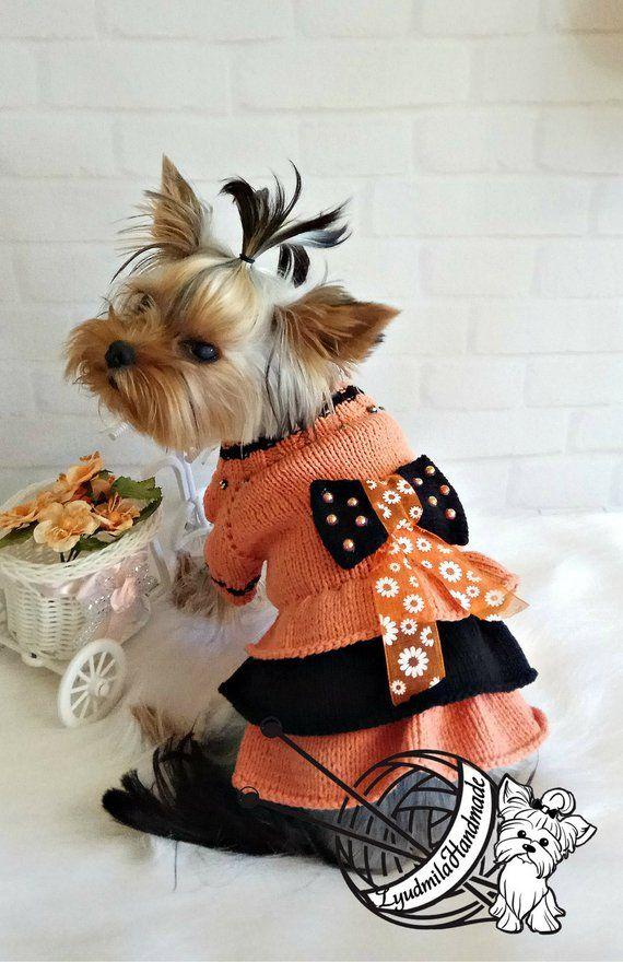 Halloween costumes dog sweaters dog clothing dog dresses