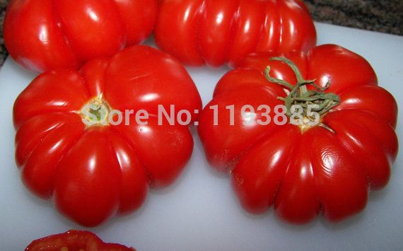 200pcs rare Costoluto Genovese Heirloom Tomato Seeds Folding tomatoes vegetable seeds for home garden planting easy grow
