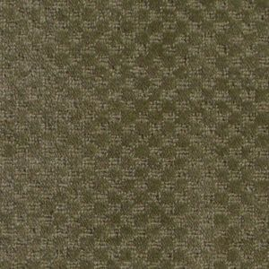 Lake Tahoe is residential wool carpet from First Step Flooring that is made of WoolTex. WoolTex contains more olefin than that of WoolSoft. WoolTex is made of 50% olefin and 50% wool yet still retains the many benefits of wool carpet.Prices listed are cut prices.