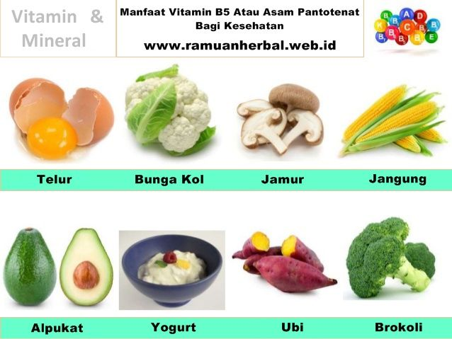 Manfaat Vitamin B5 Atau Asam Pantotenata Bagi Kesehatan  Manfaat kesehatan dari Vitamin B5 yang juga dikenal sebagai asam pantotenat, termasuk membantu mengatasi kondisi seperti asma, rambut rontok, alergi, stres dan kecemasan, gangguan pernapasan dan masalah jantung. Vitamin ini juga membantu untuk meningkatkan kekebalan tubuh, mengurangi osteoarthritis dan tanda-tanda penuaan, meningkatkan ketahanan terhadap berbagai jenis infeksi, merangsang pertumbuhan fisik, dan mengelola diabetes dan…