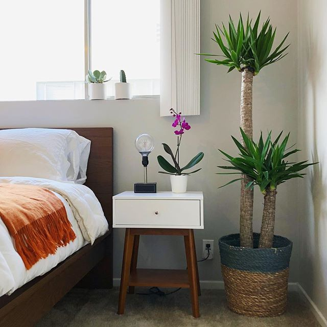 Great Find This Pin And More On Plants :: Bedroom By Opus Grows.