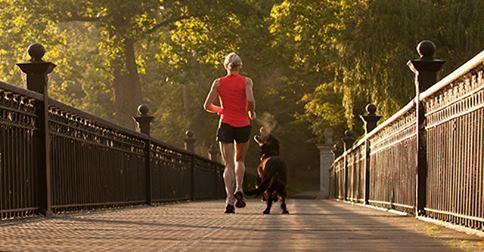 Correr sempre bem acompanhado!