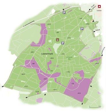 Loenen op de Veluwe - De Loenermark → Hier liggen mijn roots. Oorspronkeijk als marke van het hele dorp Loenen, des tijd van de bewoners namens de GEMEENTE Apeldoorn overgekocht, door wethouder Gosker, de vader van mijn oom, die ik later vooral uit Zwolle ken.