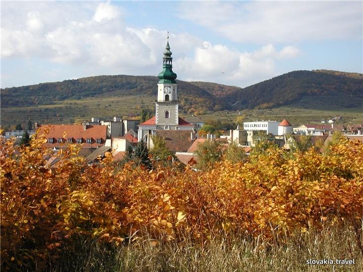 Slovakia, Modra - Town Small Carpathian Wine Route