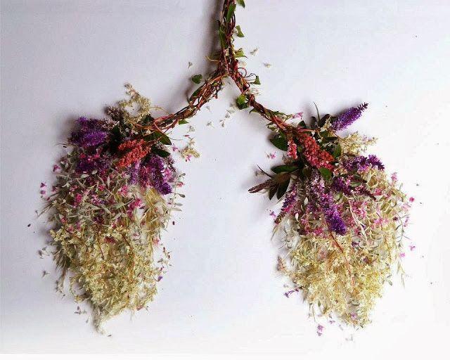 """""""Eye Heart Spleen"""" es una obra de la artista británica Camila Carlow, la cual consta de 13 fotografías que representan los órganos humanos esculpidos en plantas silvestres principalmente, entre otras plantas y flores."""