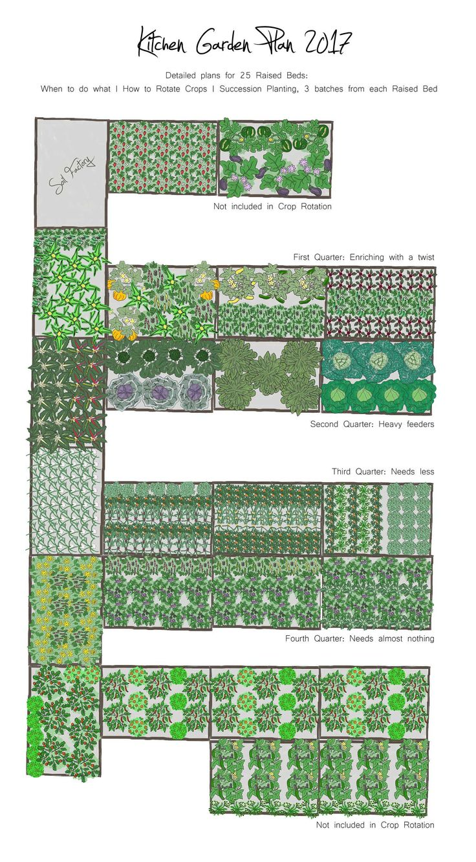 Garden Plan Raised Beds 2017 Succession planting