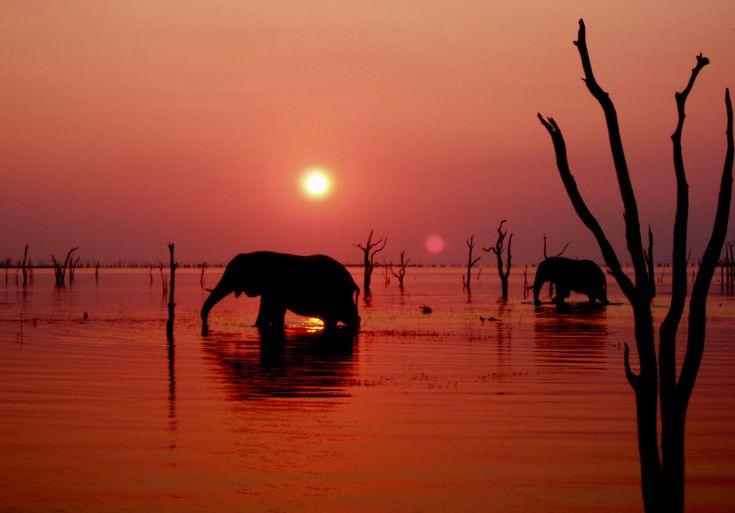Kariba, Zimbabwe - countless visits, always magical