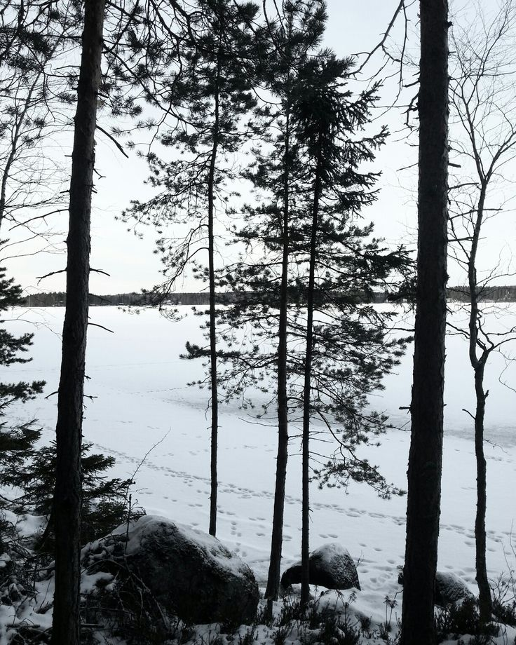 Lake Näsijärvi