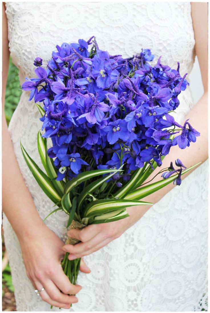 delphinium bouquet - photo #5