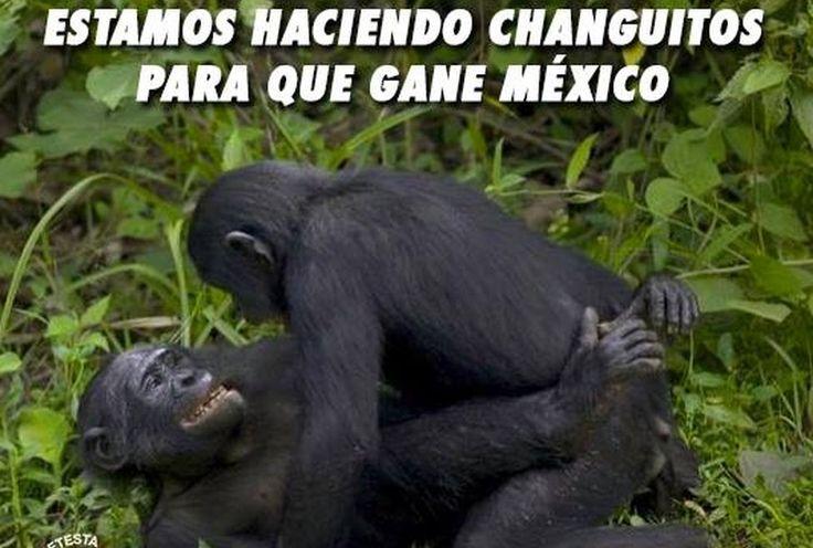 'Memes' del partido México-Croacia - Grupo Milenio