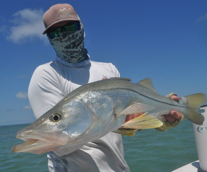 17 best ideas about saltwater flies on pinterest fly for Saltwater fly fishing