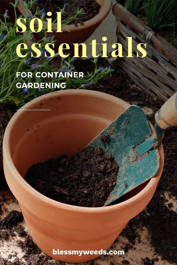Before You Start A Container Garden You Need To Know The Soil Essentials For Container Gardening It S A Misconception Th In 2020 Container Gardening Soil Garden Soil