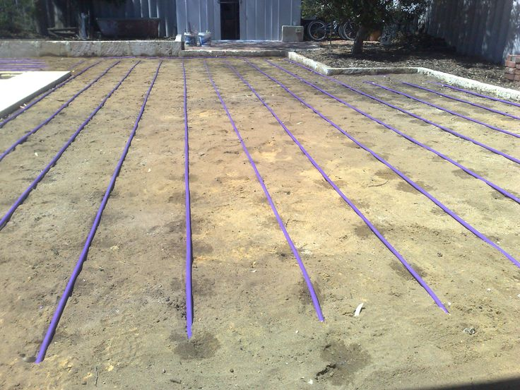 Grey water dripline irrigation. Lilac colour shows that it is greywater. Fast flow emitters spaced at 300mm intervals.