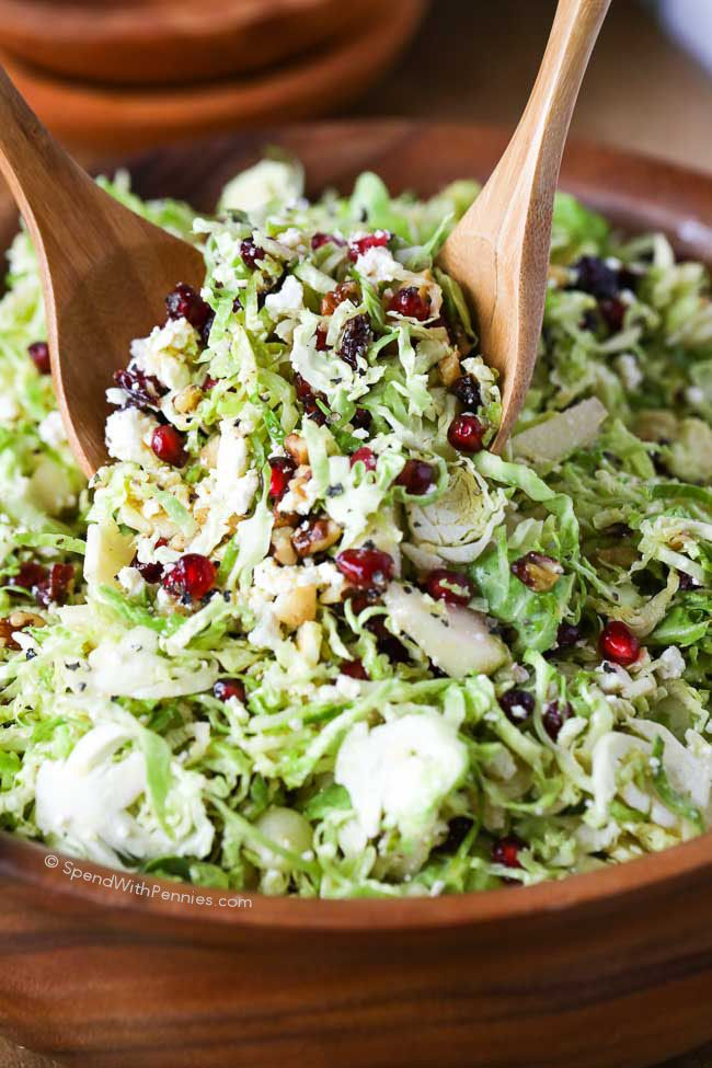 Best 25 shredded brussel sprouts ideas on pinterest for Shredded brussel sprout salad recipe