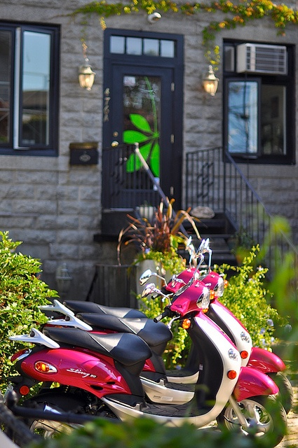 I want a pink moped!