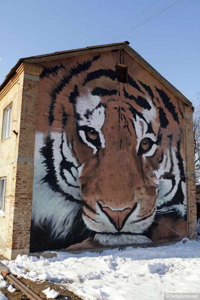 Tiger on a building street art!