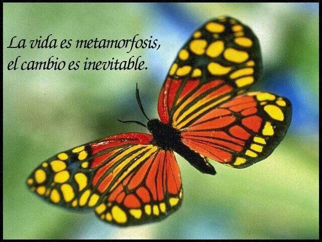 Change is inevitable!....