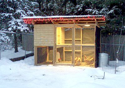 Farm Landscape Design Ideas | This is the last in a four-part series on getting your chickens and ...