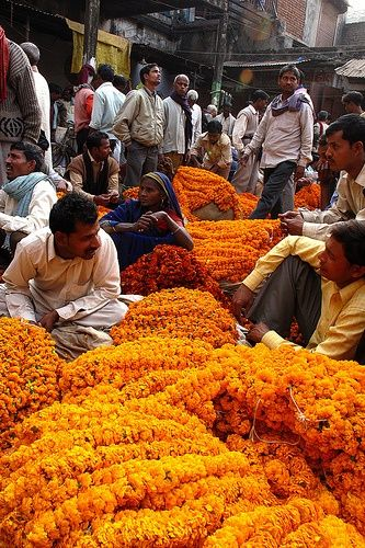 Marigold vendors, New Delhi, India