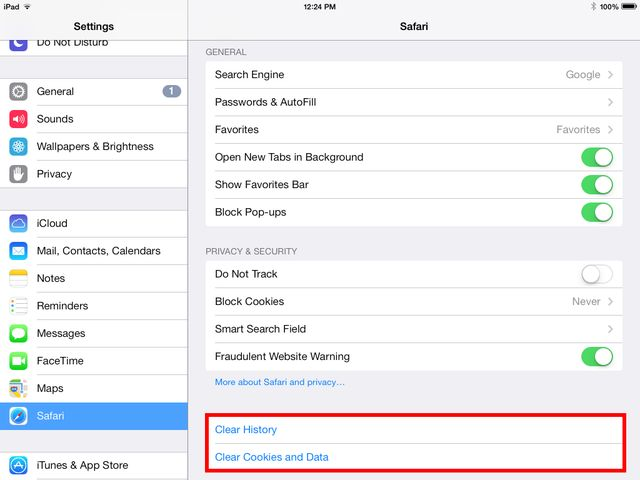 Clear Your Web History on the iPad: Removing Cookies And Web History on the iPad