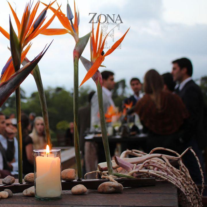 En #ZonaE predecimos tus más íntimos deseos.