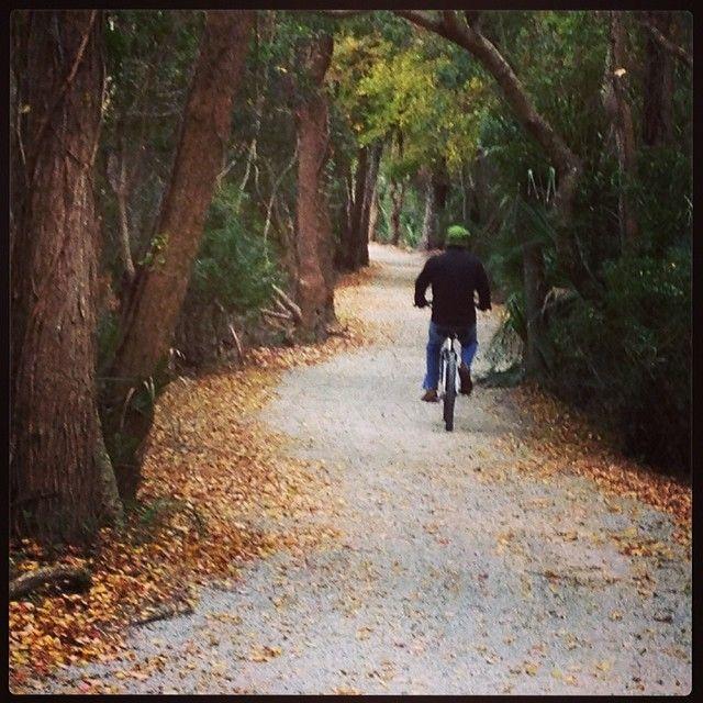 http://instagram.com/p/kxXwmulzfC/?modal=true Biking Through Sea Pines
