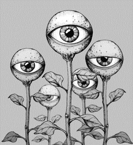 Eye blossoms.