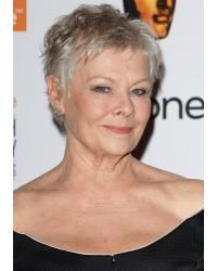 Style Judi Dench Hairstyle :: Daily hairstyles ideas of Judi Dench - Mature Hairstyles are Perfect of Judi Dench Hairstyle for about hairstyles :: This Judi Dench - Mature Hairstyles would be Cool Judi Dench Hairstyle