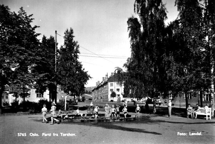 Oslo Parti fra Torshov med parken med lekende barn. 1950-tallet Utg Løndal