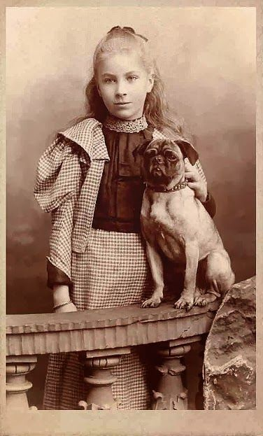 Vintage Doggy: More Vintage Pug Photos!
