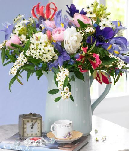 Iris, Anemone und Wolfsmilch: im Blumenstrauß zeigen sie, wie vielfältig und farbenfroh der Winter sein kann.