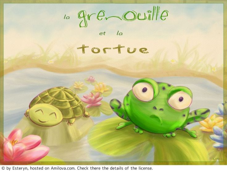 LA GRENOUILLE ET LA TORTUE - Humour : Bd en lecture gratuite (Ch.1-P.1)