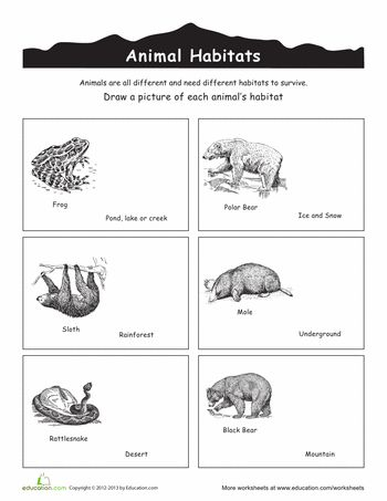 Animal Habitats Coloring Animal habitats, Habitats, Animals