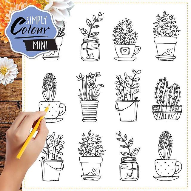 We hope you find a peaceful spot to sit and colour in the pretty plants chapter in SIMPLY Colour MINI. On sale now! #simplycolourmini #adultcolouring #simplycolour