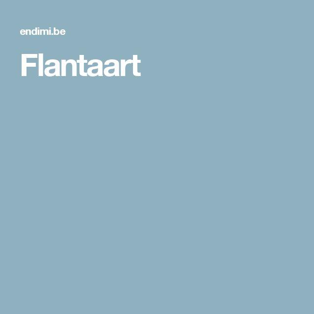 Flantaart