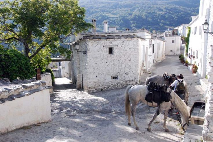 Sierra Trails Horse Riding Holidays Spain Ride Las Alpujarras Granada Andalucia - La Alpujarra