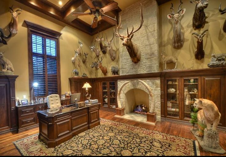 Trophy Room / Study - One thing a trophy room must have is adequate height to properly display the trophies...
