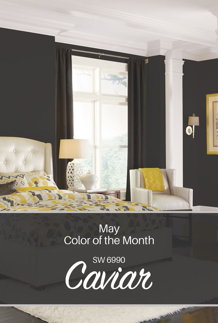 Sherwin-Williams' May Color of the Month: Caviar SW 6990