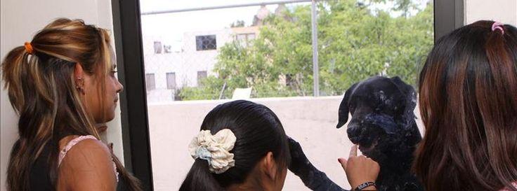 """España concede el asilo por segunda vez a una víctima de trata: huyó de México tras escapar de una red de explotación sexual y no encontrar protección en su país""""A la gente que consume prostitución, felicidades porque, gracias a ustedes, miles de niñas y de mujeres en estos momentos están secuestradas para que podáis disfrutar del sexo como queráis""""Accem, ONG que ha llevado el caso, recibe la noticia como un nuevo paso para disminuir las trabas de las víctimas de trata a la hora de…"""