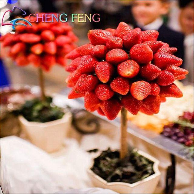 11.11 Promociones de Venta Directa 100 unids Raro Árbol de Fruta de Semilla de Fresa Semillas Plantas De Interior Semillas Jardín de Diy Para Bonsai regalo