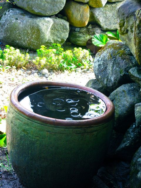just water in a water bowl creates a nice effect in a garden. so peaceful