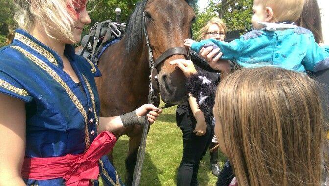 Everyboady needs a good horse