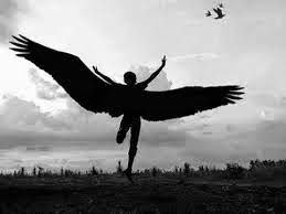 Ateu Racional - Livre pensar: Nas asas