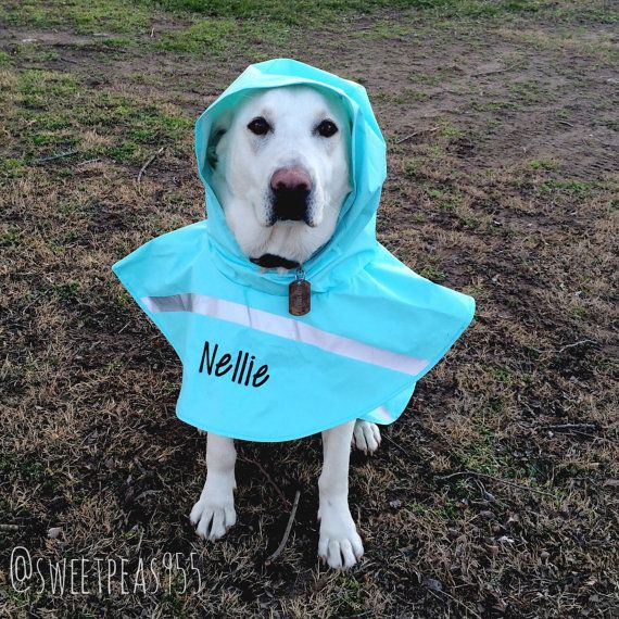 Doggie Rain Jacket Dog Raincoat Pet Rain Jacket by SweetPeas955