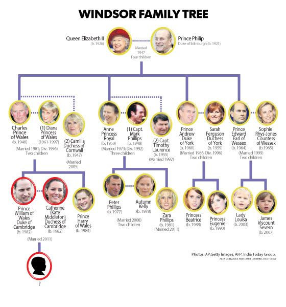королевская семья древо в картинках